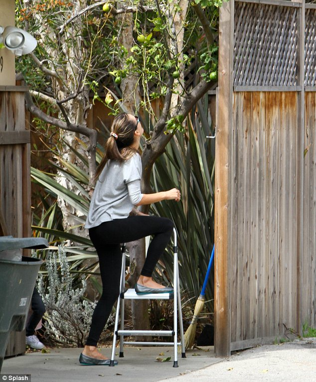 Even she needs a boost: The 31-year-old may be 5ft 9.5in but she still needed the help of a stepladder