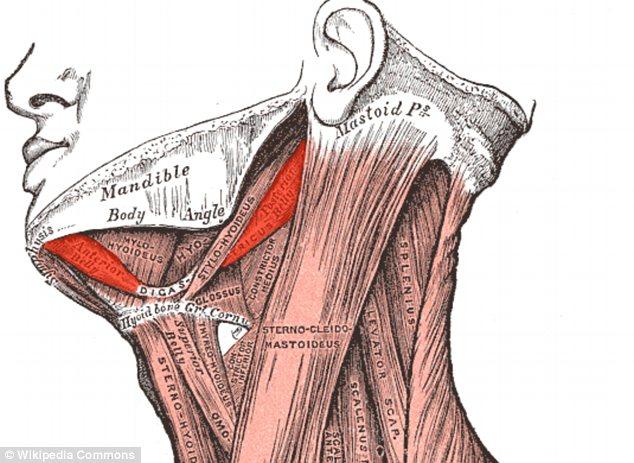 Vibrator improves voice