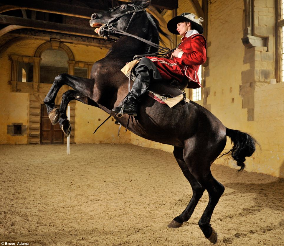 Giddy up: Six-year-old Ocle obeys rider Ben Atkinson, 19, in a haut ecole sequence at Bolsover Castle in Derbyshire