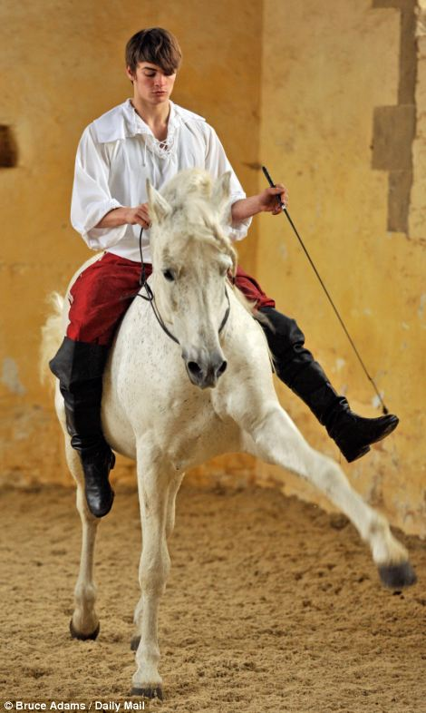 Can-can: The horses are taught to do a graceful dance by their masters