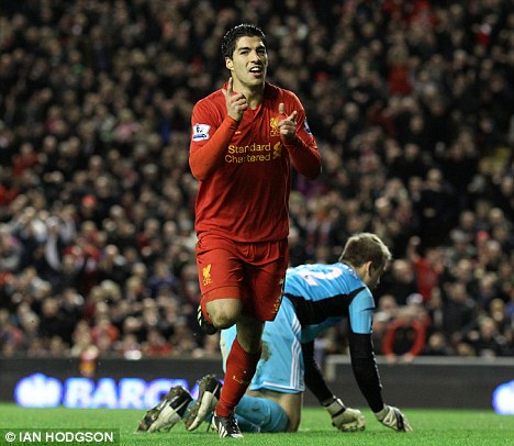 Top of the pile: Luis Suarez has bagged 22 goals in the Premier League this season for Liverpool