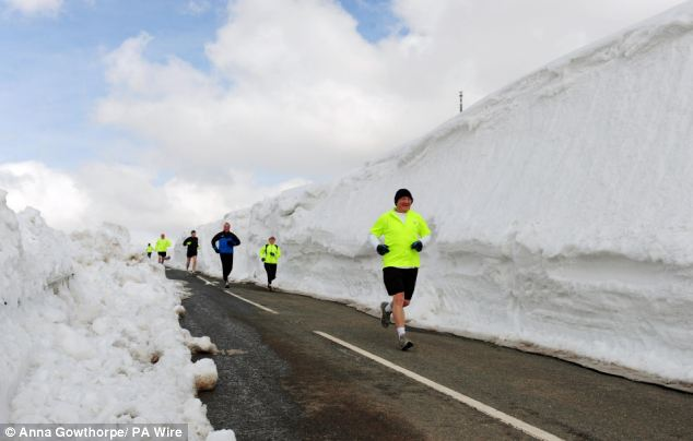 Wall of snow: Joggers take a route alongside large snow drifts which still remain on the roads near Holme Moss on the edge of the Peak District National Park