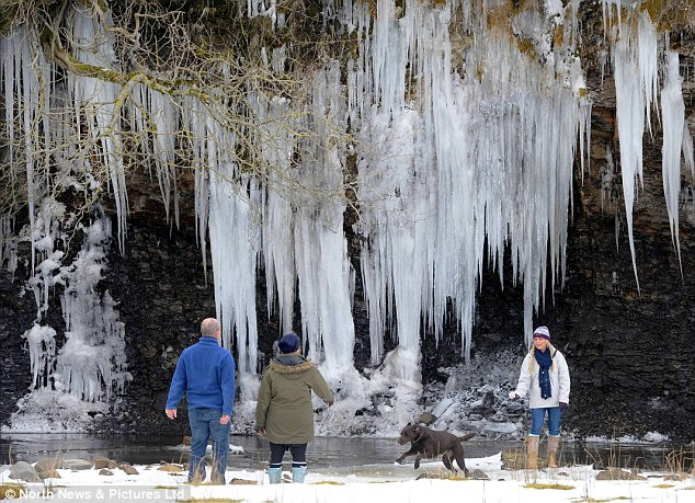 Chilly: Walkers look at a wall of icicles in County Durham while on an Easter Sunday walk during the unseasonably cold Easter weekend