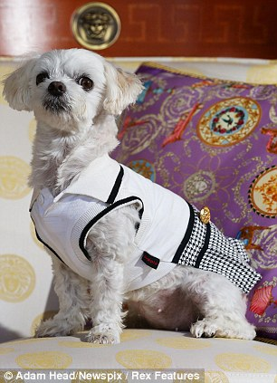 Personal pooch touches: There are super-soft futon bed, discounts on fashionable canine couture and the chance to hang out at fine-dining restaurant, Vie
