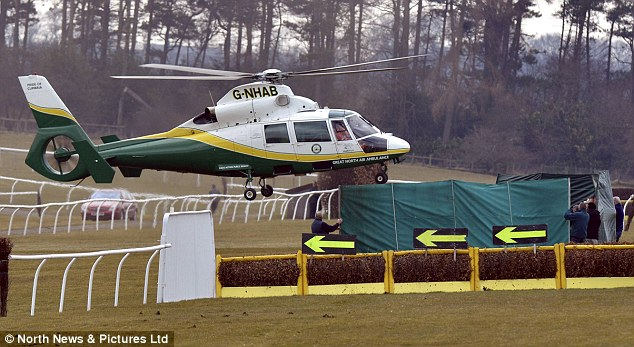 Medical assistance: The Great North Air Ambulance lands at Hexham Racecourse next to the fence where Grand National-winning jockey Ryan Mania fell on Sunday