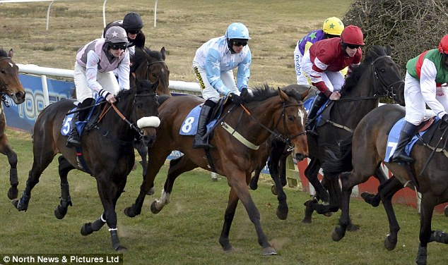Mount: Ryan Mania riding Stagecoach Jasper (No 8, centre) moments before his fall at Hexham