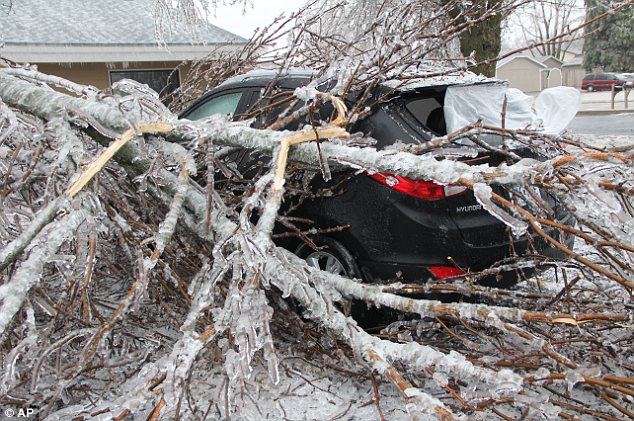 Cold snap: A fallen, ice-covered tree rests atop a vehicle it fell upon in Worthington, Minnesota