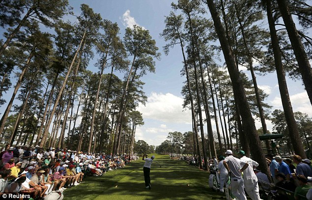 Pine frame: Fred Couples hits his tee shot on the 17th hole