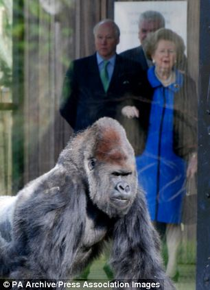 Lady Thatcher and Richard Stone visit the gorilla enclosure at London Zoo in 2007