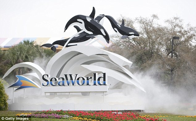 SeaWorld's open letters ads, which appeared in newspaper around the country today, are on behalf of the marine park's 1,500 employees, it says