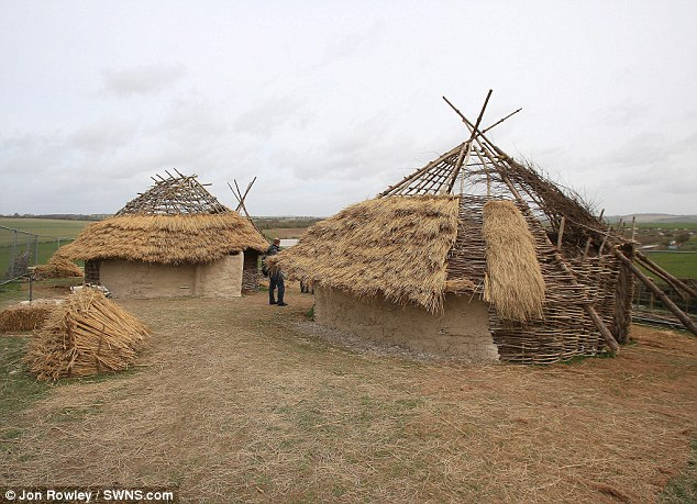 Ancient: The huts are replicas of those lived in 4,500 years ago by workmen who built Stonehenge