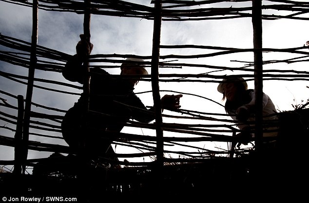 Working hard: Gareth Heathcote and Janey Green lay straw onto a neolithic hut roof at Old Sarum