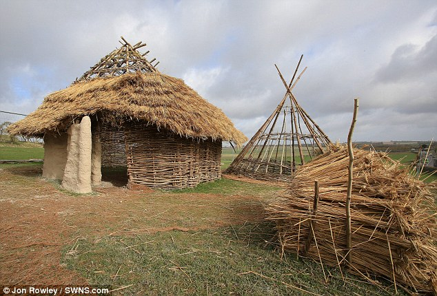 Ancient: The three huts will be built at the Stonehenge visitor centre around 1.5 miles to the west of the monument early next year