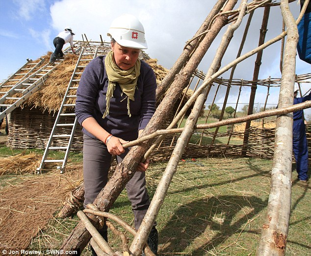 Looking back: English Heritage say the huts will offer an authentic glimpse of the lifestyle and technology of the Neolithic people who built Stonehenge
