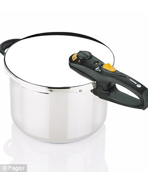 Fagor pressure cooker like the used in the Boston bombings