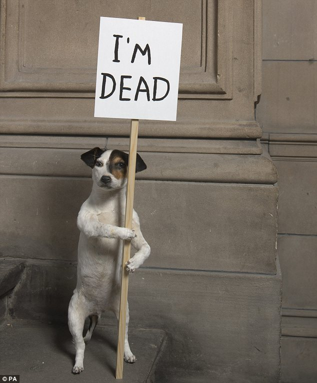 Award: I'm Dead (2010) by David Shrigley, who was today nominated for the Turner Prize