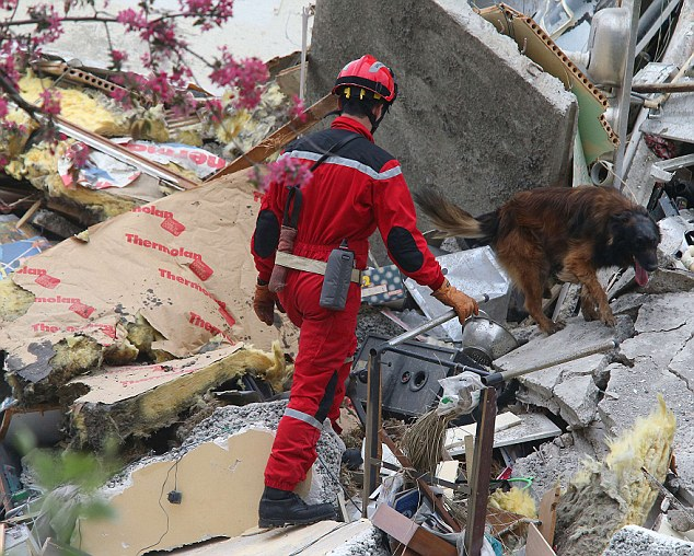 A rescuer and his dog search though the rubble after the building collapsed this morning