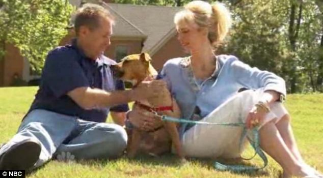 Xena, the Warrior Puppy has found a very happy home with Linda Hickey, 44 and her husband Grant, 50. They own two other dogs, but said they are too old to play with their son