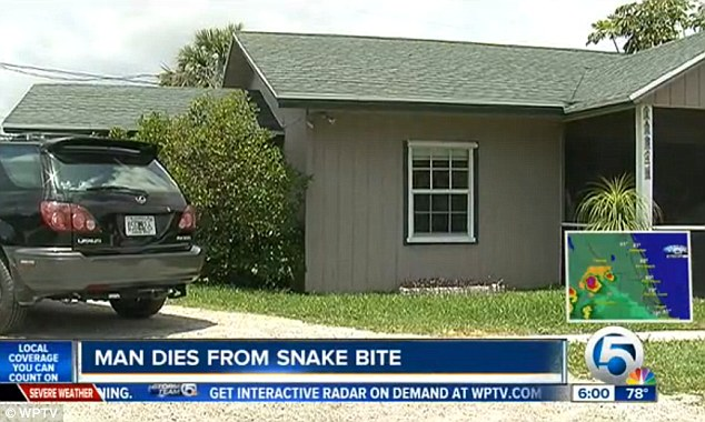 Snake: The man was bitten by the snake out the front of his daughter's home, pictured, in Hobe Sound