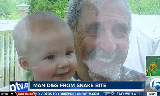 Bitten: Richard Flora, 76, pictured with a young relative, was bitten by an Eastern Diamondback Rattlesnake on Thursday out the front of his daughter's home in Hobe Sound, Florida