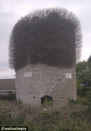 Incredible: This outbuilding looks remarkably similar to Welsh singer Tom Jones