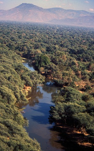 The Zambezi boasts stunning scenery and an array of wildlife