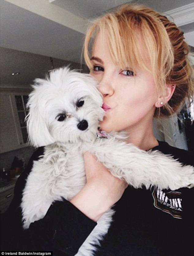 Puppy love: The pretty model, whose mother is Kim Basinger, shared numerous photos of herself getting cosy with the puppies