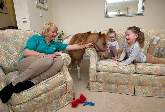 Friendly: The miniature horse plays with owner Katy Smith's friends children Lacey, 2 and Lilly, 5