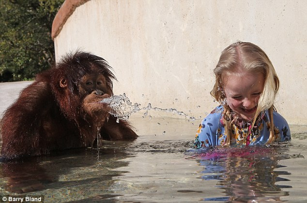 Going ape: Playful Rishi srays water at a giggling Emily as the two of them cool off in his pool