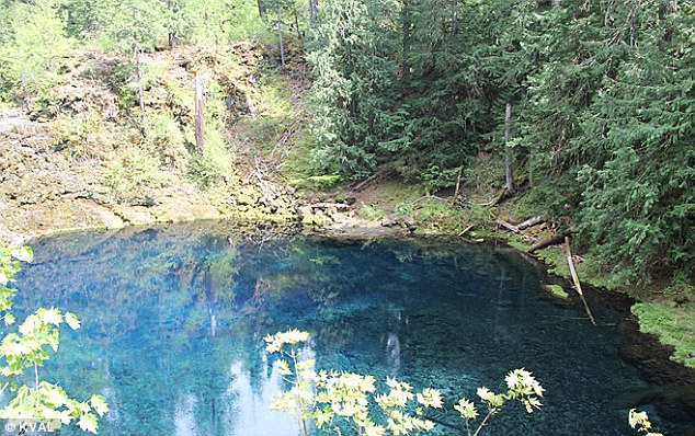 Scene: He jumped into Blue Pool, pictured, but is believed to have hit the water with his face and chest