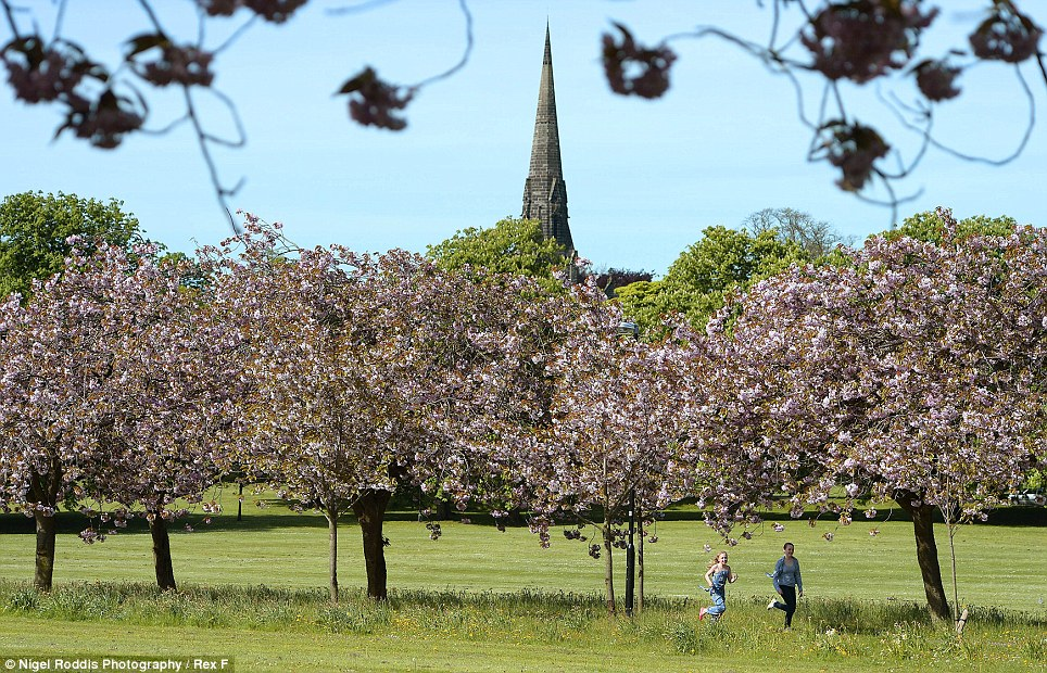 The Stray in Harrogate. The daytrippers should make the most of the sunshine while it lasts, as tomorrow is set to be much cooler, with the rest of the week an unsettled mix of sunshine and showers