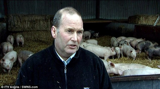 Pig farmer Stephen Brown was found dead three days after he was accused of animal cruelty
