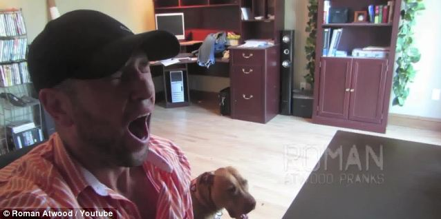 Man's best friend: The end of the video shows a man yawning while sat next to his pet