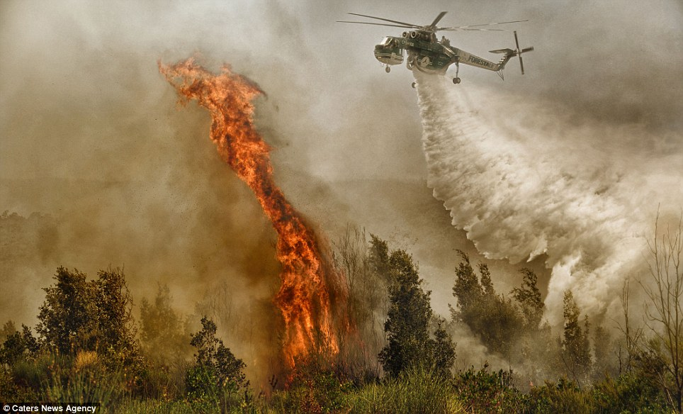 On target: Brave pilots are on a course straight into these enormous flames as they release tonnes of water onto the fire