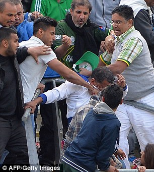 Blow: Spectators brawl in the stands