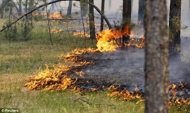 Growing: The blaze was expected to spread as dry and hot weather in Colorado continued through the end of the week