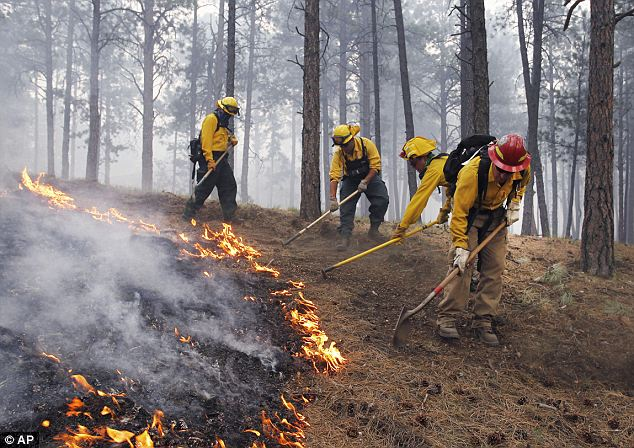 Who's in control? Firefighters hope these controlled burns will stem damage to populated areas by creating a ring of fuel-less forest
