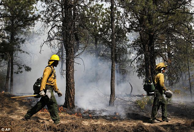 Doing what they can: Americorps firefighters help contain a fire outside Colorado Springs as hundreds others succumb to a sadder fate. This is the first time an evacuation has been put into affect within the city's limits
