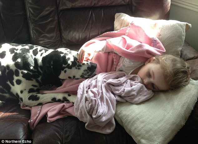 Costly move: The Goodfellows decided to return to the UK before their pet dog Molly, pictured with Savannah, was sent out to Australia to join them - which would have cost them £4,000 for the flight alone