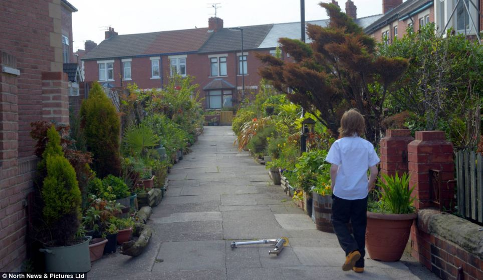 Residents have been told to apply for a grant for new plant pots if they want to hang on to their flowers