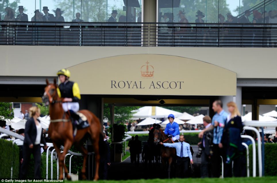 Runners make their way down to post for the Norfolk Stakes on Ladies' Day during day three of Royal Ascot