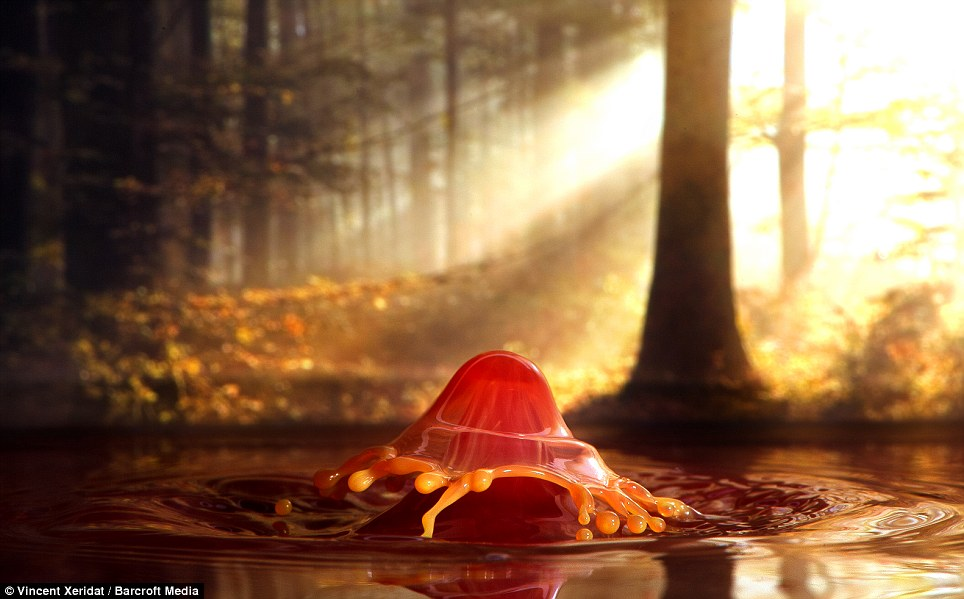The 'autumn mushroom' was again created using a pipette to release droplets and create tiny splashes. A macro lens, flashgun and reflex enclosure allow Mr Xeridat to capture the rebounds in detail at 1/2000 of a second