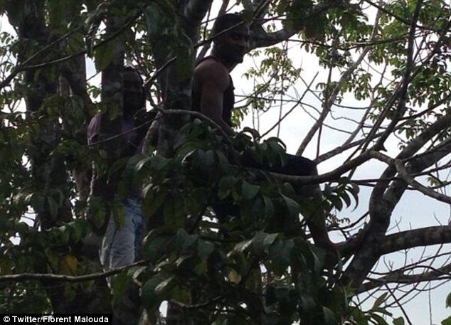Just chilling: Florent Malouda sitting in a tree and (below) greeting school children who clamoured to meet him