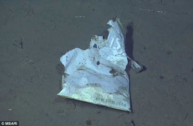 Slow A cast off bag of potato chips. Plastic and metal, in the absence of llight, heat, and bacteria can take many years to degrade