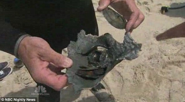 Debris: A diver shares a piece of the mine discovered after the explosion. The Navy plans to send more divers out in the area to make sure the beach is safe for swimming