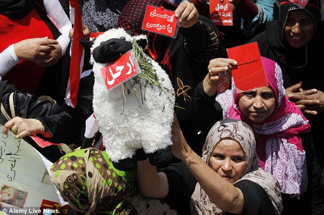 One protestor holds a toy sheep as a sign. Mass demonstrations across Egypt on Sunday may determine its future, two and half years after people power toppled a