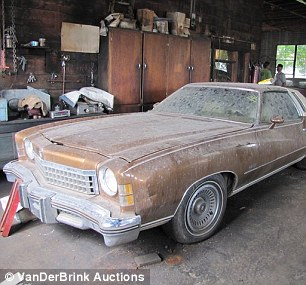 Collectors Items: Some of the cars belonging to the Lembrecht family have been sealed away for 17-years to preserve their condition and motors