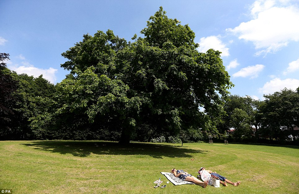 Blue skies: Charmaine and Steve Scutt from Brighton relax in the sun at Torkington Park in Stockport