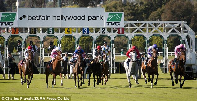 Action: Stewards at Hollywood Park, Inglewood, Ca, have received a rebuke from the chairman of the state racing board over the affair