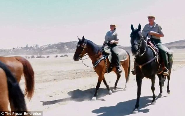 High and low: Police searched on horseback and used bloodhounds to see if he was hiding in the nearby hills
